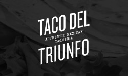 TDT_logo_miniature_1